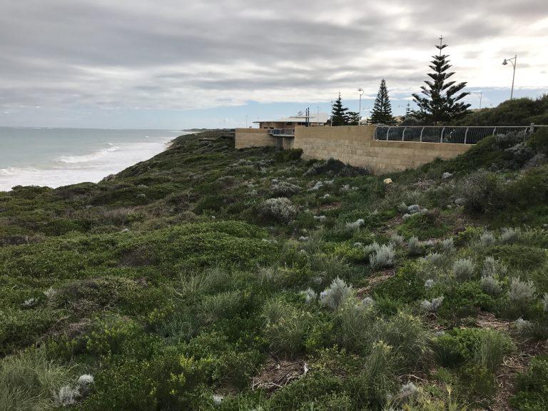 P594B Lookout view Jul2017
